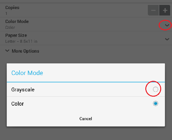 How Can I Print In Black And White Only From Mobile Device