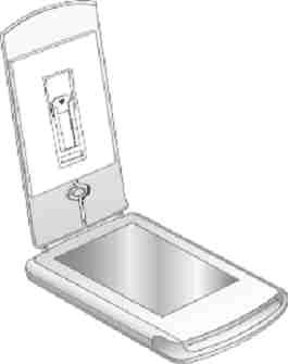 TMA location inside the scanner lid