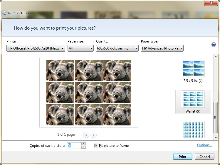 solved how do i print wallet size pictures of the same picture on p
