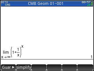 Euler Constant Bug.jpg