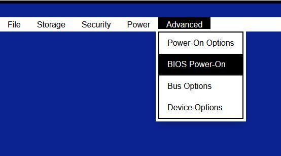 bios option.JPG