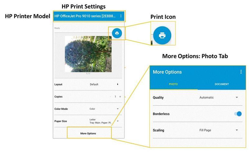 14 HP Print Plugin.jpg