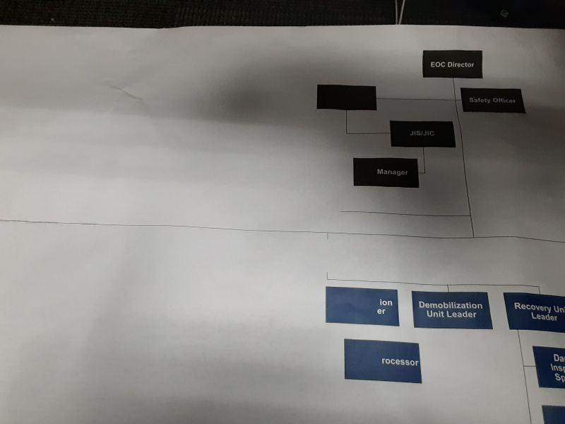 There should be a lot of red boxes on the left side of org chart.