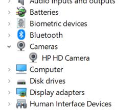HP HD Camera.png