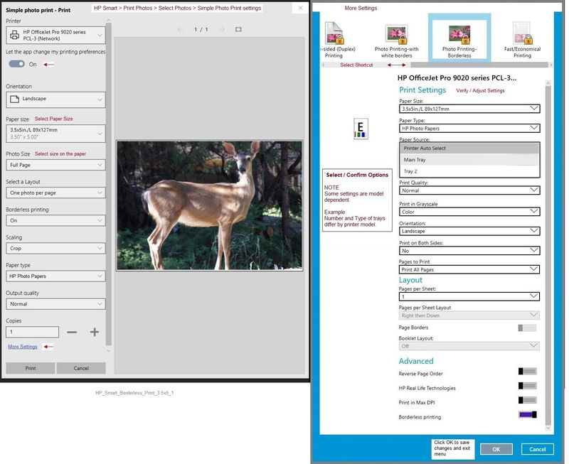 HP_Smart_Borderless_Print_3.5x5_1