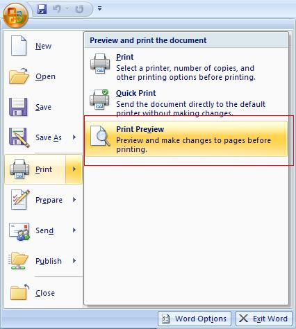 Print Preview from Word 2007.JPG