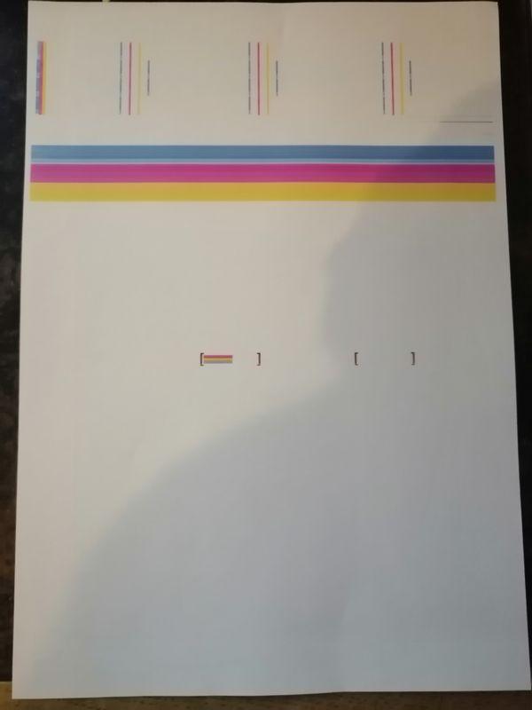 Print report.jpg