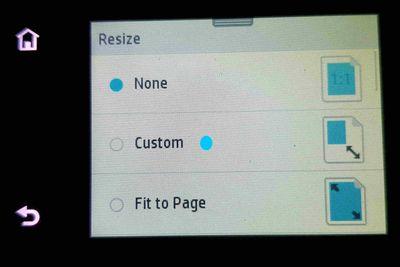 4 Custom.jpg
