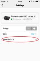 printer options.PNG